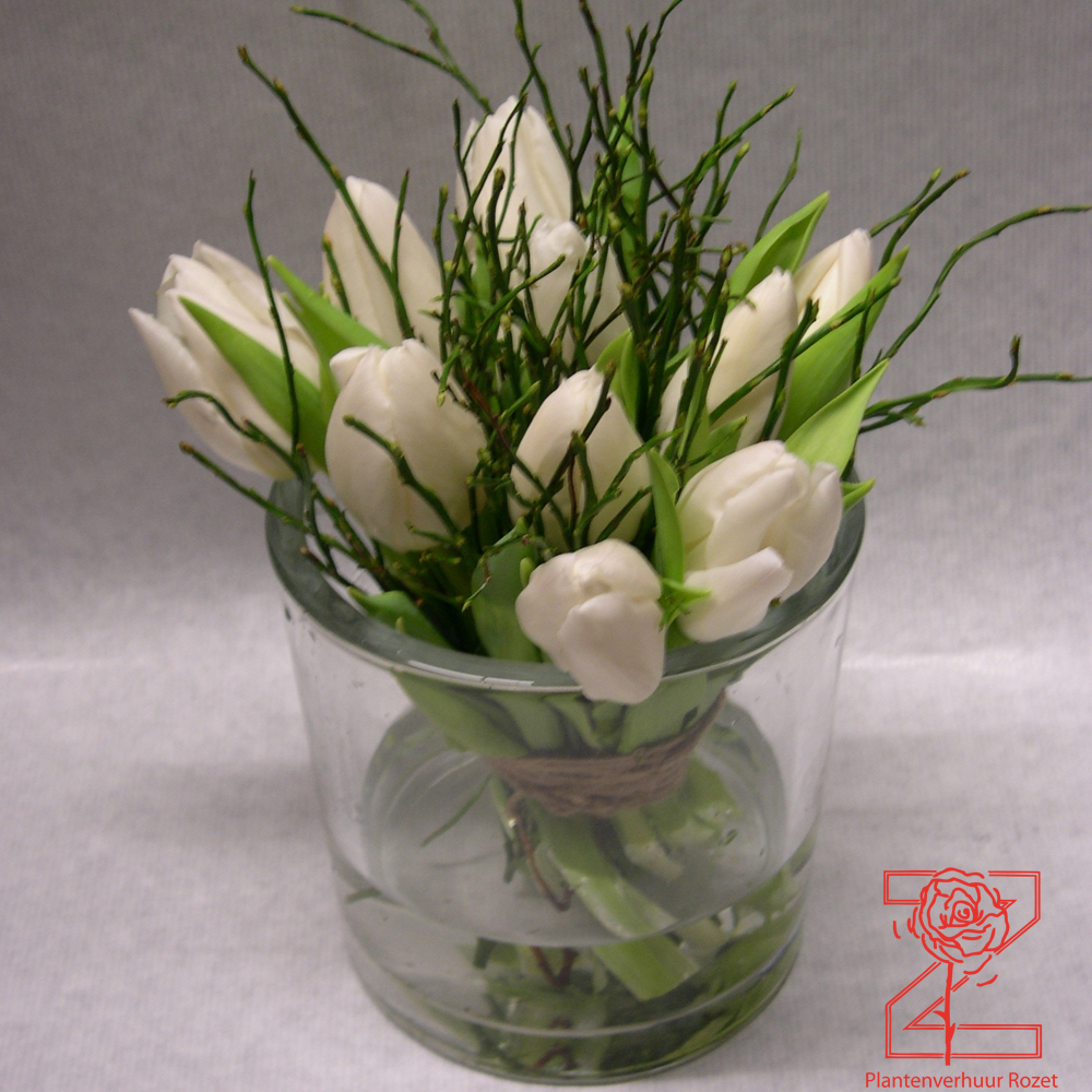 Verhuur bloemdecoraties   Plantenverhuur Rozet   Plantenverhuur Rozet